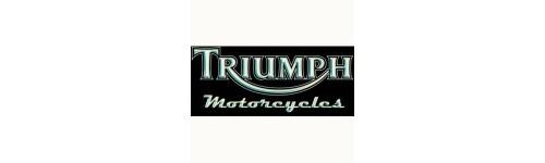 Scarichi e terminali per Triumph