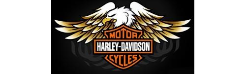 Centraline elettroniche per Harley Davidson