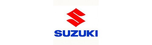 Centraline elettroniche per Suzuki