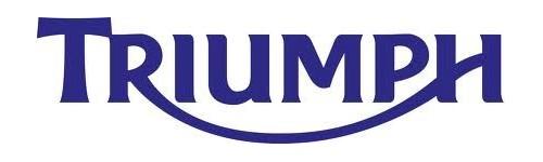 Centraline elettroniche per Triumph